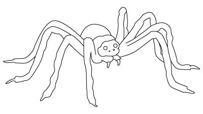 coloriage d'araignée
